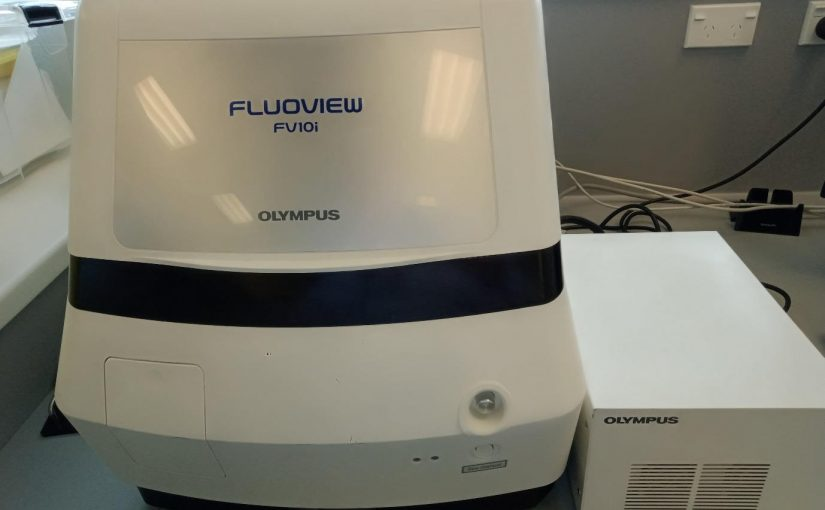Olympus Confocal Laser Scanning Biological Microscope
